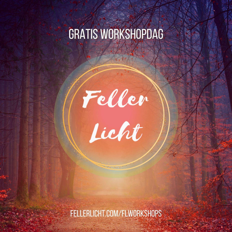 feller licht logo en visual